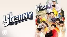 Y-Destiny